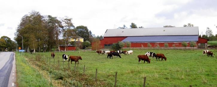 Köttkulla gård, Bo & Gottfrid Gotting