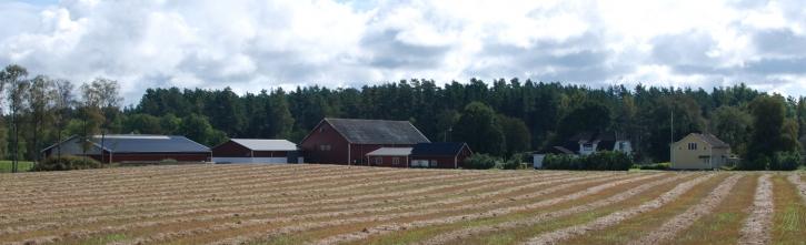 Algutstorp gårdsbild